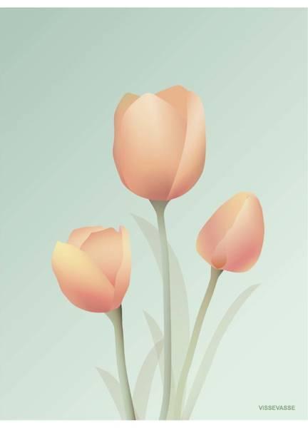Bilde av PLAKAT - Tulipan Mint - Vissevasse