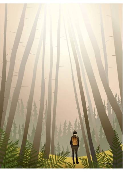 Bilde av PLAKAT - Into The Woods - Vissevasse